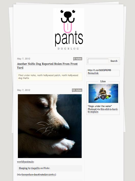 Pants Dog Walking Tumblr by Casandra Armour